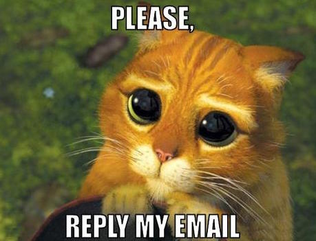 reply-my-email-meme-2