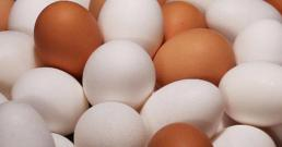 bowl-of-eggs-promo