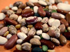ingredients-beans-dried-heirloom-public-domain-image-com-4x3